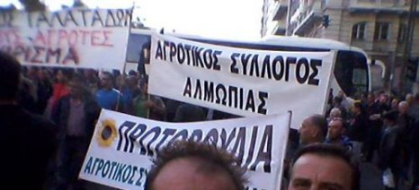 Αγροτικός Σύλλογος Αλμωπίας: Λάθη και αδικίες στην πληρωμή των ενισχύσεων