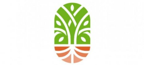 Ο Αγροτικός Σύλλογος Λιβαδειάς διαμαρτύρεται διότι οι εκκοκκιστές κάθε  χρόνο μεταφέρουν το ρίσκο της τιμής πώλησης του βάμβακος στους αγρότες |  agro24.gr
