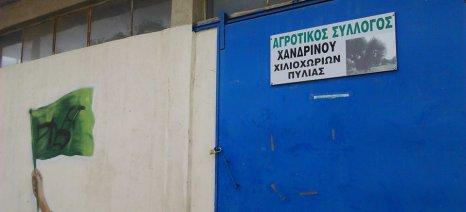 Το παράδειγμα της ισπανικής κυβέρνησης ζητά ο Α.Σ. Χανδρινού να ακολουθήσει και η Ελλάδα για τη στήριξη των ελαιοπαραγωγών