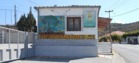 Τραγωδία σε συνεταιριστικό ελαιοτριβείο στον Αλμυρό: Δύο νεκροί και δύο τραυματίες