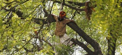 Αγρότης απαγχονίσθηκε μπροστά στα μάτια πλήθους κόσμου