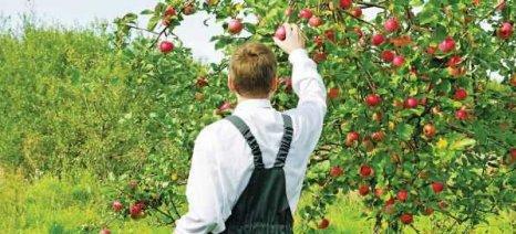 Από τις 28 Φεβρουαρίου ξεκινούν αιτήσεις για την βιολογική γεωργία