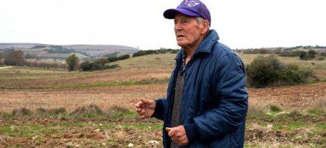 Μειώθηκε το αγροτικό εισόδημα στην Ελλάδα κατά 0,7% σε έναν χρόνο
