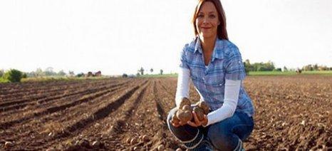 Έως την Παρασκευή αιτήσεις για το βοήθημα σε πολύτεκνες αγρότισσες