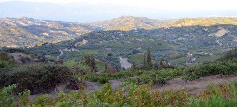 """Να """"επιστραφούν"""" στη γεωργική χρήση εκτάσεις που δασώθηκαν, ζητούν 16 βουλευτές του ΣΥΡΙΖΑ"""