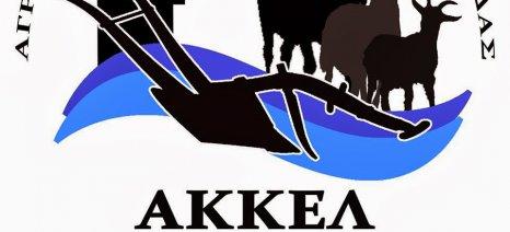 Το ΑΚΚΕΛ αποσύρει τη στήριξή του στους Ανεξάρτητους Έλληνες