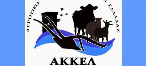 """AKKEΛ: Το σύστημα """"σπέρνει"""" αγροτικά κόμματα ώστε να μας διασπάσει"""