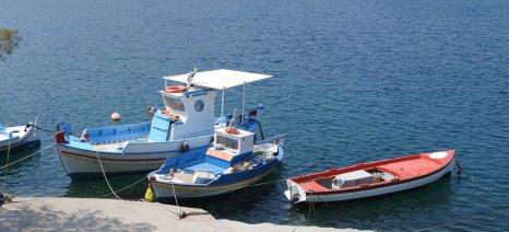 Πρόταση της Κομισιόν για πολυετές σχέδιο διαχείρισης αποθεμάτων ψαριών στην Αδριατική