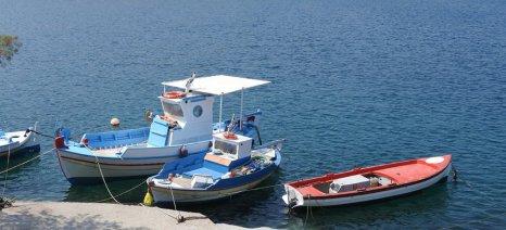 Επιστολή Φιλ. Ζαννετίδη για να αρθεί η απαγόρευση αλιείας της μικρής κόκκινης γαρίδας την περίοδο Μαΐου-Ιουλίου