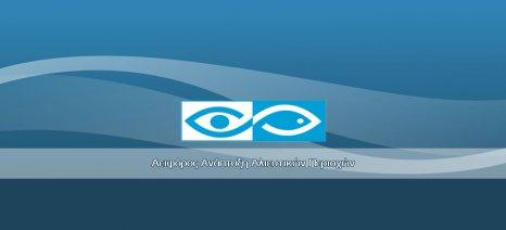 Από βουλκανιζατέρ μέχρι ταβέρνες επιδοτεί το Επιχειρησιακό Πρόγραμμα Αλιείας