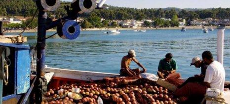 Ερώτηση του ΚΚΕ για το θανατηφόρο ατύχημα αλιεργάτη στην Κεραμωτή