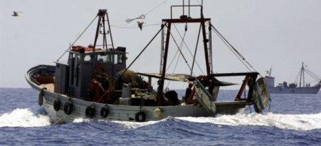Εκδόθηκαν δύο προσκλήσεις προϋπολογισμού 15 εκατ. € για τον έλεγχο της αλιείας