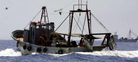 Ένταση των μέτρων καταπολέμησης της παράνομης αλιείας ζητά η Commission από τον Ισημερινό