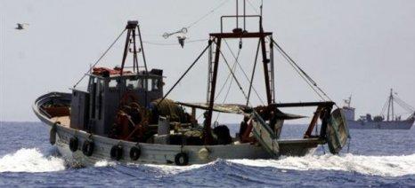 Ενισχύσεις στους αλιείς που πλήττονται από την απαγόρευση της αλιείας γάδου Ανατολικής Βαλτικής
