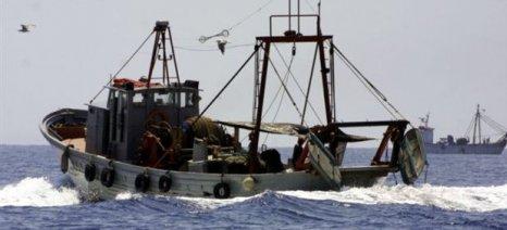 Πράσινο φως για τις αλιευτικές δυνατότητες του 2020 σε Μεσόγειο και Εύξεινο Πόντο