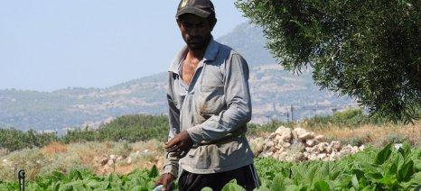 Πέρασε η τροπολογία για τη νομιμοποίηση επιπλέον εργατών γης με τη διαδικασία του εργόσημου