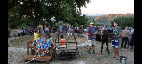 Αναβίωση αλωνίσματος για παρασκευή ψωμιού σε ορεινό χωριό των Χανίων
