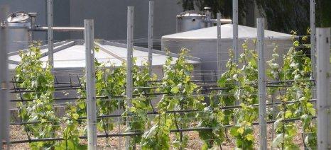 Να συμπεριληφθούν οι δεξαμενές βρόχινου νερού στα Σχέδια Βελτίωσης ζητούν οι αγρότες της νότιας Κρήτης
