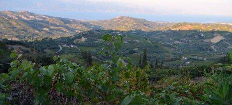 Μέχρι 15 Ιανουαρίου πληροφόρηση και ενστάσεις για ΠΣΕΑ φυτικού κεφαλαίου (καύσωνας 2017) στο Αίγιο