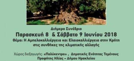 Συνέδριο στο Ηράκλειο για τις συνέπειες της κλιματικής αλλαγής σε αμπέλι και ελιά, με Κόκκαλη και Κουρεμπέ