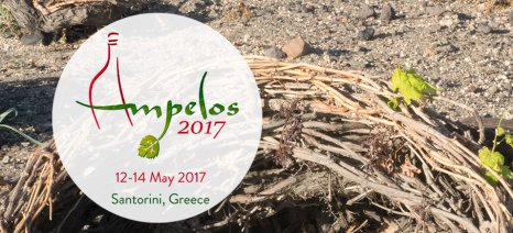 """To 4o Συμπόσιο """"ΑΜΠΕΛΟΣ"""" θα πραγματοποιηθεί στη Σαντορίνη, το Μάιο του 2017"""