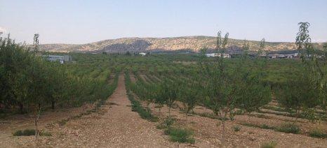 Βγήκε η τελική κατάταξη των δικαιούχων νέων αγροτών και στη Θεσσαλία - εντάχθηκαν 281 επιλαχόντες