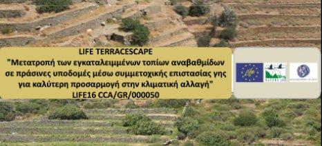 Εκδήλωση για τη διάσωση και επανακαλλιέργεια των αναβαθμίδων της Άνδρου στις 29 Ιανουαρίου