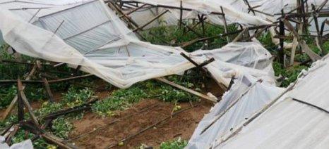 Μέχρι τις 11/9 στη διάθεση του κοινού τα πορίσματα για τις ζημιές από την ανεμοθύελλα στο Δήμο Καλαμάτας