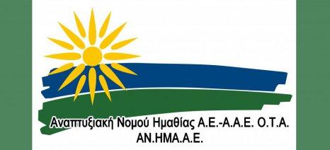 Εντάχθηκαν 26 σχέδια επενδύσεων στο 3ο Leader Ημαθίας, ενώ ζήτησαν χρηματοδότηση 43