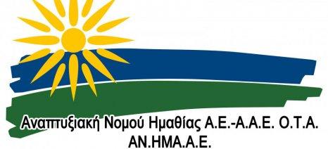 Αναπτυξιακή Ημαθίας: Ολοκληρώθηκε η πρώτη φάση αξιολόγησης των τοπικών Leader