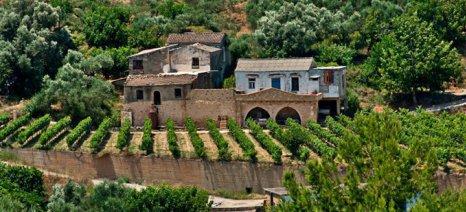 """Χρυσή και Ασημένια διάκριση για τα κρασιά της """"Ανώσκελης"""" στη Berliner Wein Trophy 2015"""