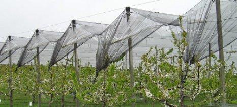 Έως τον Ιούνιο το πόρισμα για την συμμετοχή ιδιωτικών εταιρειών στις γεωργικές ασφαλίσεις