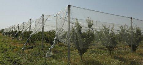 Συνεργασία ΕΛΓΑ και Α.Σ. Ζαγοράς για εγκατάσταση συστημάτων ενεργητικής προστασίας στις μηλιές