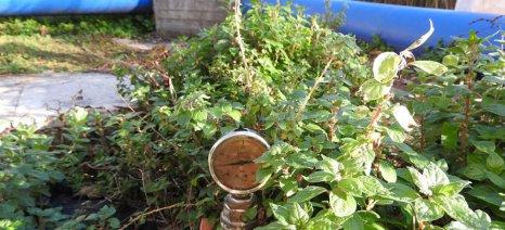 Με τη βοήθεια της Περιφέρειας Ηπείρου η συντήρηση των αντλιοστασίων των ΤΟΕΒ