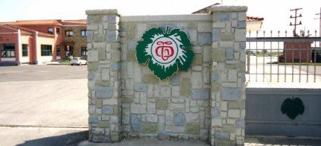 Πρόγραμμα συμβολαιακής γεωργίας για τα μέλη του Αγροτικού Οινοποιητικού Συνεταιρισμού Τυρνάβου, μέσω της Πειραιώς
