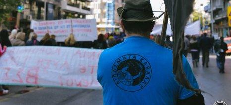Η αρχή του τέλους της ασυδοσίας Λαυρεντιάδη: Το Δικαστήριο δικαίωσε τους απολυμένους των ELFE
