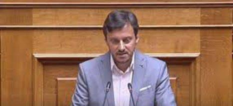 Απόστολος Πάνας: «Χωρίς χρονοδιάγραμμα οι αποζημιώσεις για τη Χαλκιδική»