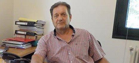 Να λάβει μέτρα η πολιτεία κατά της παράνομης διακίνησης ροδάκινων ζητά η Ένωση Κονσερβοποιών