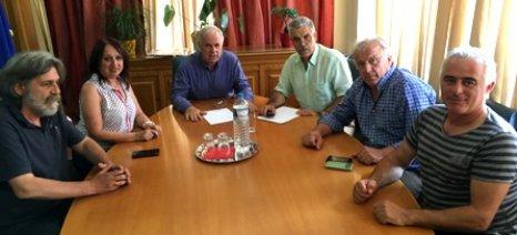 Β. Αποστόλου: Ο κρόκος αποτελεί βασικό «εργαλείο» για τον αγροτικό χώρο της Κοζάνης