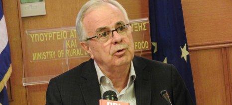 Η ελληνική αμπελουργία χρειάζεται συνεργασία και συνεννόηση όλου του διαθέσιμου ανθρώπινου δυναμικού