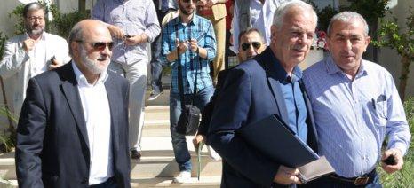 Πιο ελαστικά κριτήρια για ομάδες ελαιολάδου και γάλακτος ζητά η Κρήτη