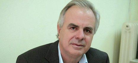Αποστόλου: «Σε διαδικασία εξατομίκευσης και οι ζημιές στα αμύγδαλα στο Καλοχώρι»