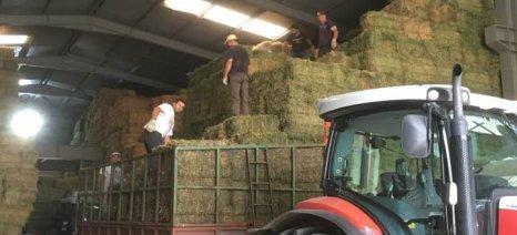Έως και 100.000 ευρώ επιδότηση δικαιούται ο αγρότης που θα ενταχθεί στο πρόγραμμα Νέων Γεωργών και στα Σχέδια Βελτίωσης
