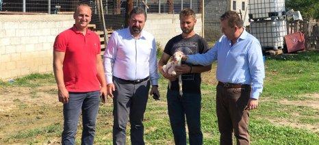 Νέα απάντηση Αραχωβίτη στο «σίριαλ» της τροπολογίας για τις αδικίες σε κτηνοτρόφους από επιχορηγήσεις παλαιότερων ετών