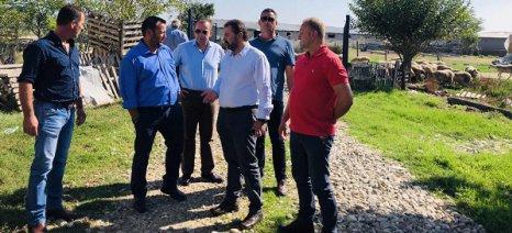 Κριτική στις προθέσεις της κυβέρνησης για το φορολογικό και ασφαλιστικό των αγροτών άσκησε ο Αραχωβίτης