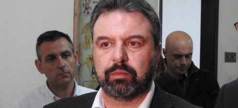 Αραχωβίτης: Ο κ. Βορίδης, κατά την προσφιλή του τακτική, δεν θα κάνει τίποτα ούτε για τους ελαιοπαραγωγούς