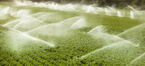 Ενέργειες ΥΠΕΝ και ΥΠΑΑΤ για την αντιμετώπιση της νιτρορύπανσης γεωργικής προέλευσης