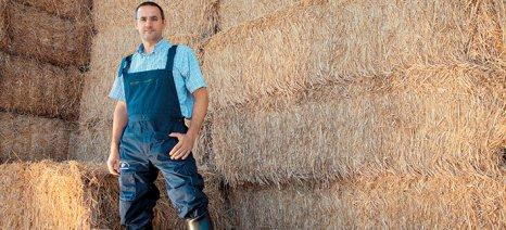 Αρσένος: Οι Έλληνες κτηνοτρόφοι θα πρέπει να επανεξετάσουν το κόστος εκτροφής