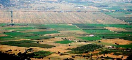 Ο Αγροτικός Συνεταιρισμός Τσαριτσάνης δέχεται προσφορές για το αγρόκτημά του