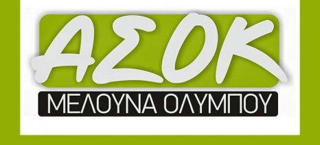 Εκδήλωση ενημέρωσης για την εκκαθάριση του Α.Σ. «Η Μελούνα Ολύμπου» στην Τσαριτσάνη